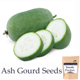 Ash Gourd Seeds (Open Pollinated)