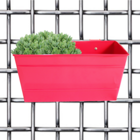Daisy Pot- Rectangular Railing Planter- Magenta - Gardenershopping