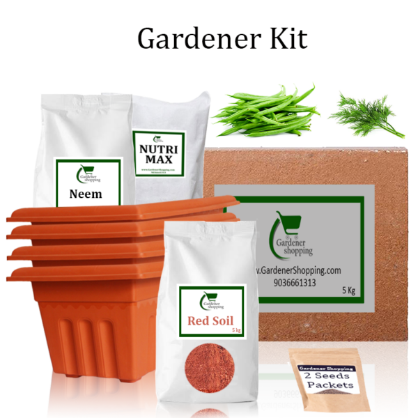 Plastic Pots Gardener Kit Starter recommend- French Beans And Dill (Buy Complete Grow kit/ Growing kit Online India) - Gardenershopping