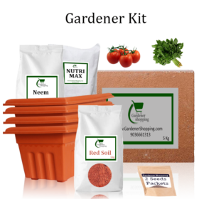 Plastic Pots Gardener Kit Starter recommend- Round Tomato, Amaranthus (Buy Complete Grow kit/ Growing kit Online India) - Gardenershopping