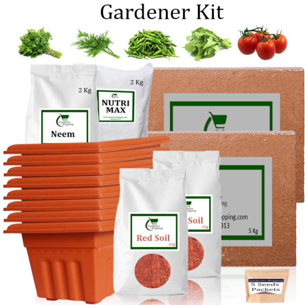 Plastic Pots Gardener Kit Value Added- Parsley, Dill, Green Chilli Small, Spinach, Round Tomato (Buy Complete Grow kit/ Growing kit Online India) - Gardenershopping