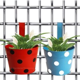 Set of 2- Bingo pots- Round Dotted Railing Planters- Red And Blue - Gardenershopping