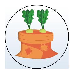 Leafy Vegetable Seeds